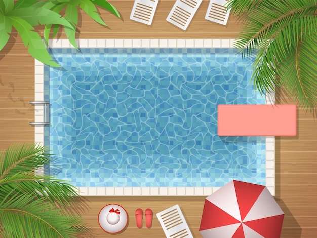 Swimming pool and palm top view illustration Premium Vector
