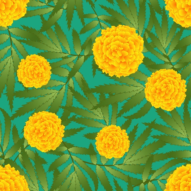 Tagetes on green background Premium Vector