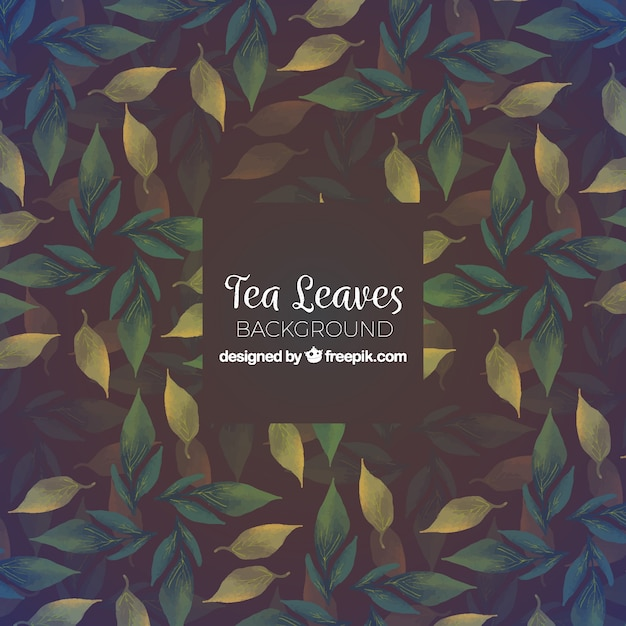 Tea background with leaves Free Vector