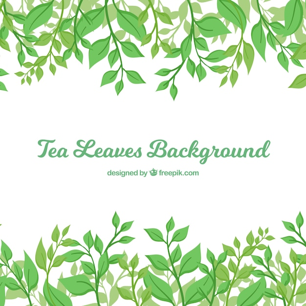Tea leaves background in flat style Free Vector
