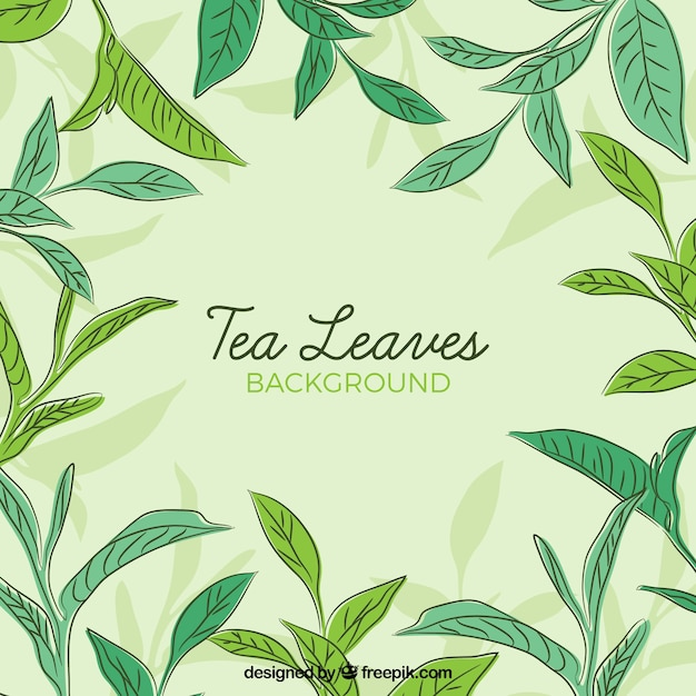 Tea leaves background in hand drawn\ style