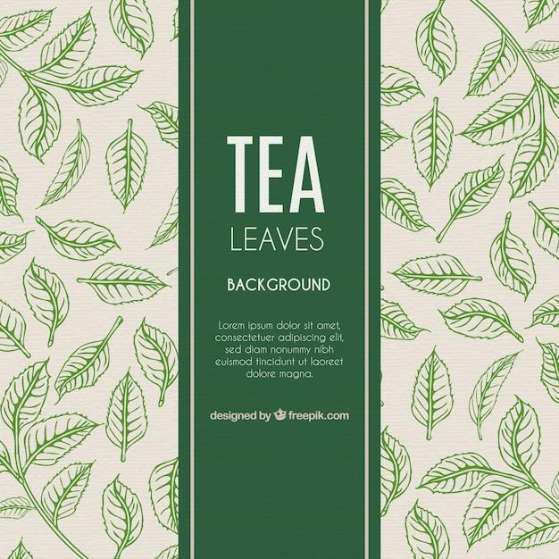 Фон из листьев чая в ручном стиле Бесплатные векторы