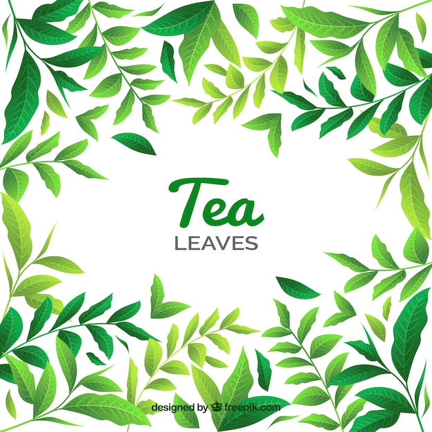 Tea leaves background with different\ plants