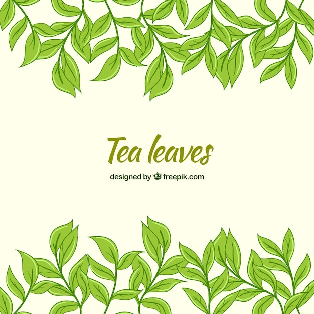Tea leaves background with flat design