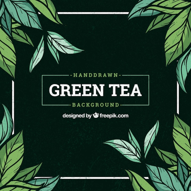 Tea leaves background with plants