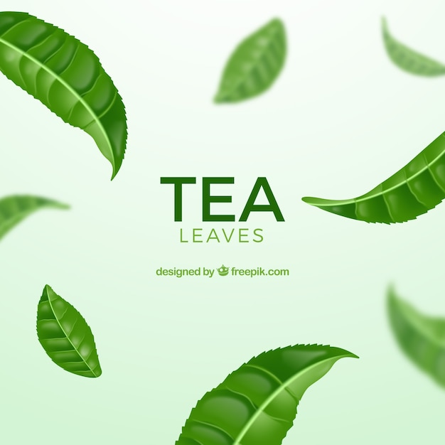 Tea leaves background with realistic style Free Vector
