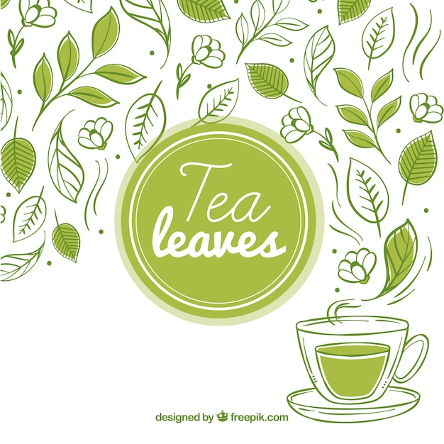 Tea leaves background with tea cup Free Vector