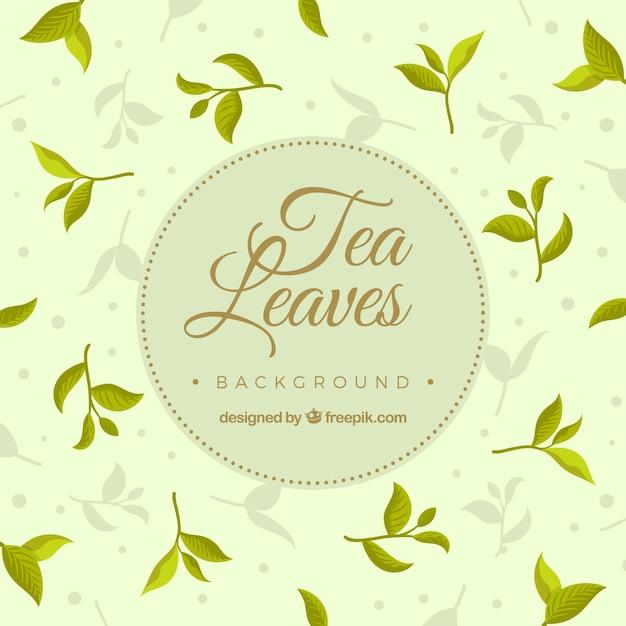 Tea leaves background with vegetation