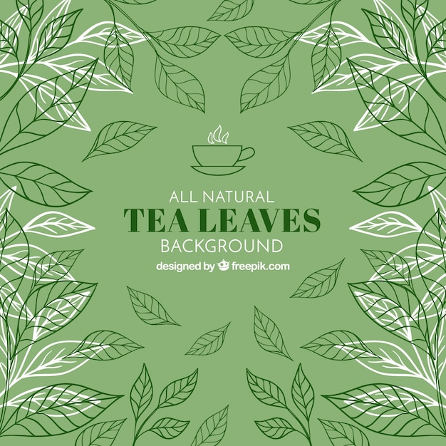 Tea leaves background with vegetation Free Vector