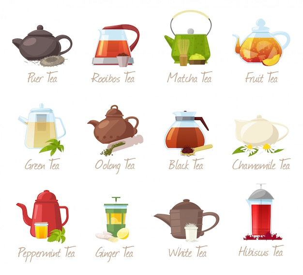 Tea  puer-tea and rooibos or matcha fruity drinks in teapot illustration drinking set of green or black tea in cafe  on white background Premium Vector