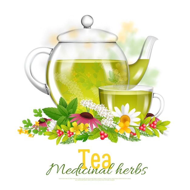 Teapot and tea cup medicinal herbs illustration Free Vector