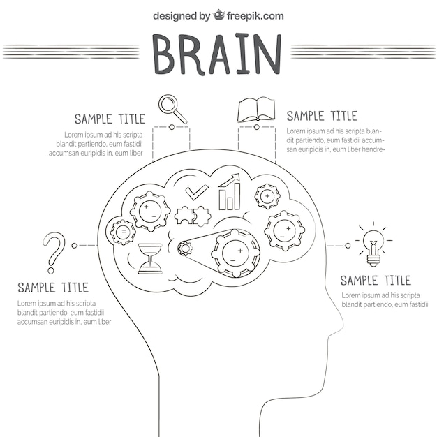 Template of human brain infographic with icons Vector ...