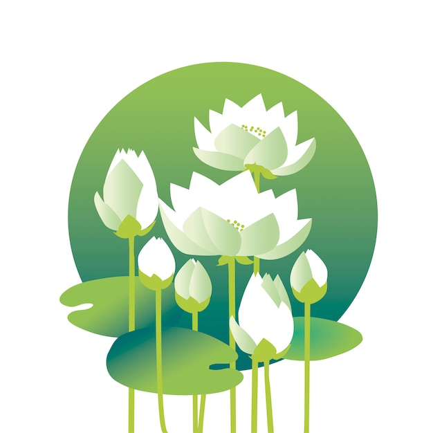 Tender elegant white water floral  illustration for invitation, greeting, poster. water lily, lotus flowers in nature stylized image. Premium Vector