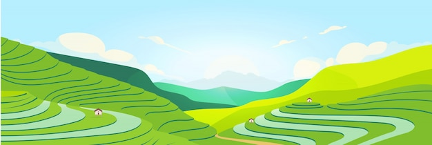 Terraced fields at sunset Premium Vector