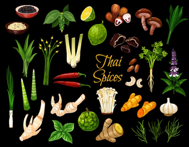 Thai spices, herbs and cooking condiments Premium Vector