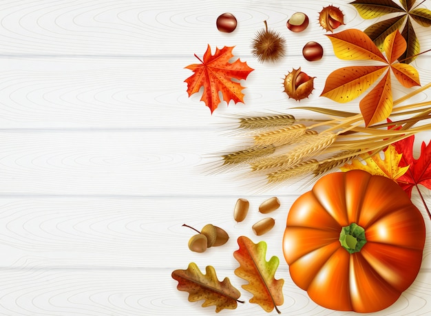 Thanksgiving day stylish composition with autumn colors and different pumpkins set Free Vector