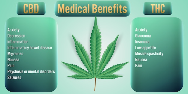 Thc cannabis medical benefits Premium Vector