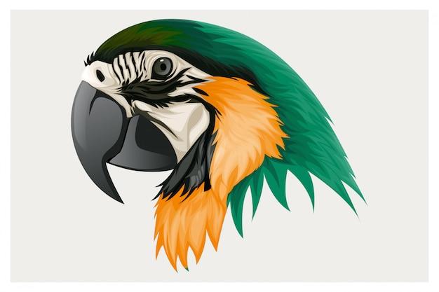Пернатые попугаи зелено-желтые Premium векторы