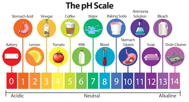 The Science Ph Scale Vector Free Download