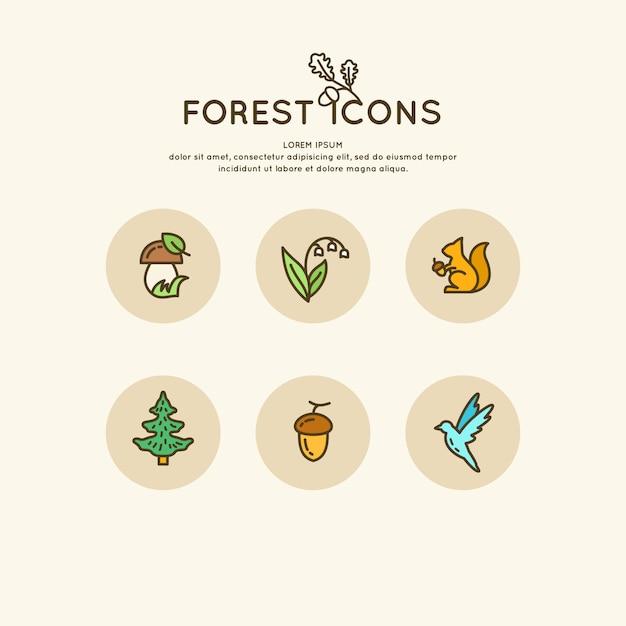 Набор линейного леса иконок и иллюстраций. векторные животные и растения Premium векторы