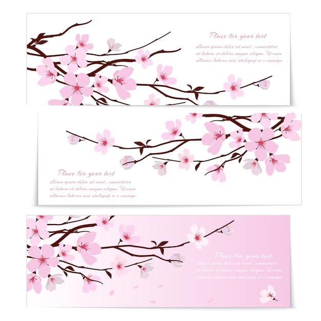 Три баннера со свежими розовыми декоративными цветами сакуры или цветением вишни Бесплатные векторы
