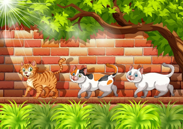 Three cats walking on the wall Premium Vector