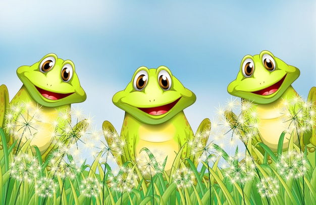 Three frogs in the garden Free Vector