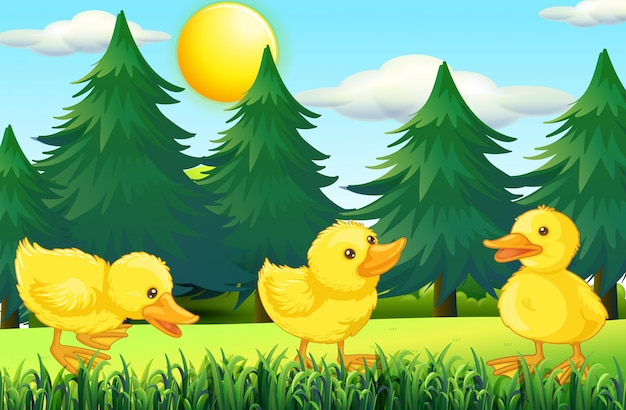 Three little ducklings in the park Free Vector
