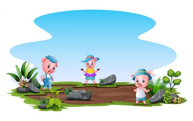 フィールドで遊ぶ三匹の子ぶた Premiumベクター