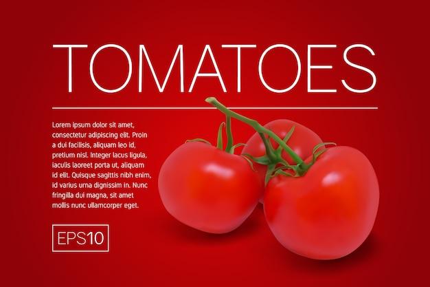 枝に3つの完熟した赤いトマト。赤い背景の写実的なイラスト。 Premiumベクター
