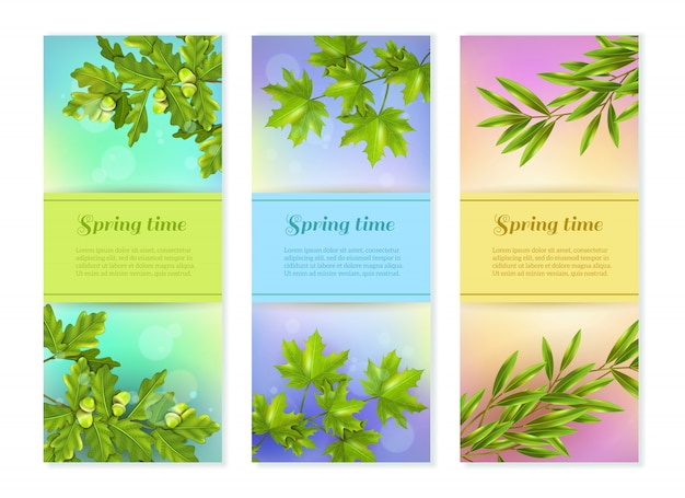 Three vertical branch banners Free Vector