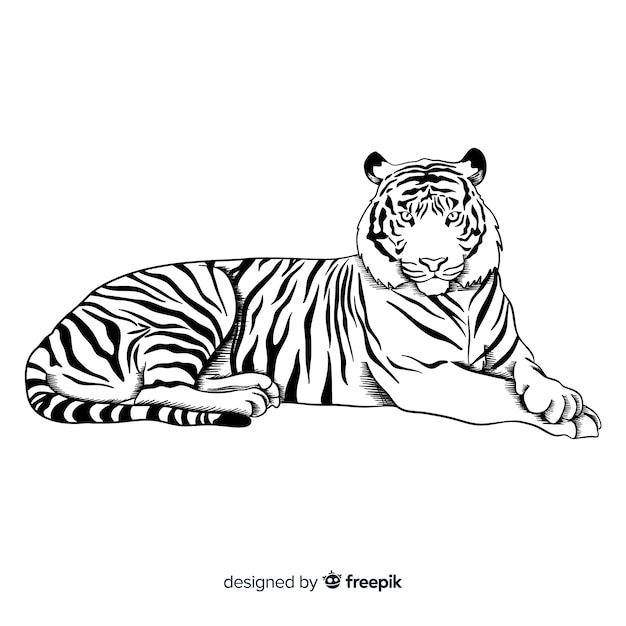 Tiger background Free Vector