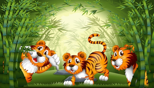 Tiger in bamboo forest Premium Vector