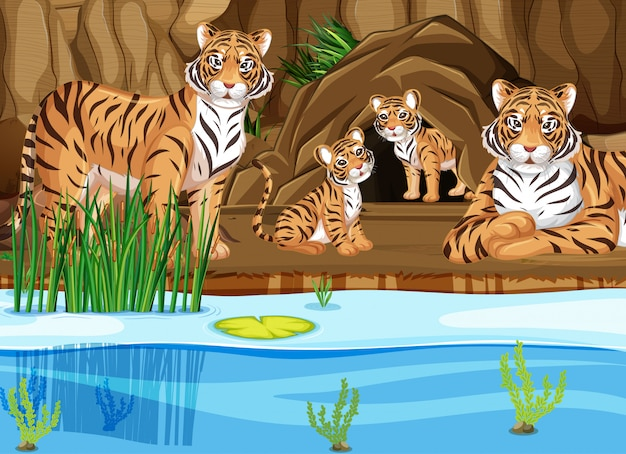 Tiger family by the pond Free Vector