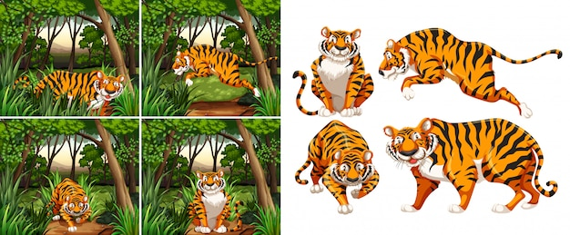 Tiger in the forest Free Vector