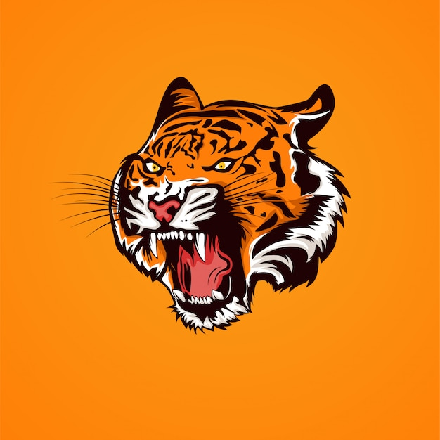 Tiger head opens mouth and show the fangs illustration Premium Vector