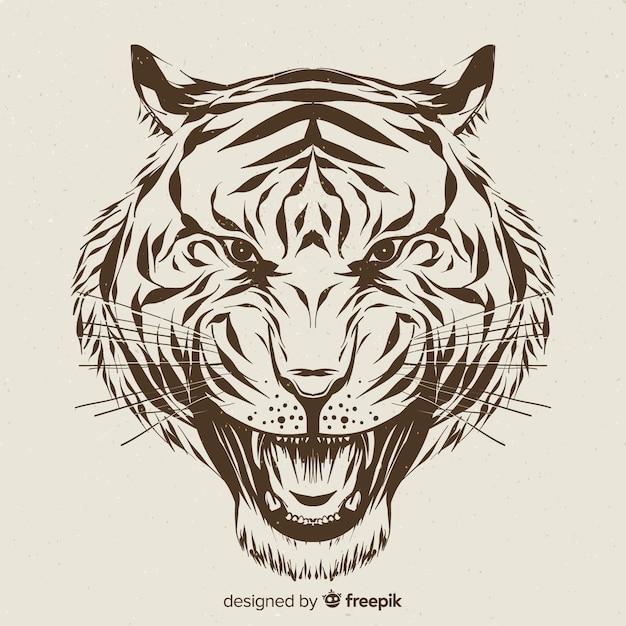 Tiger head Free Vector