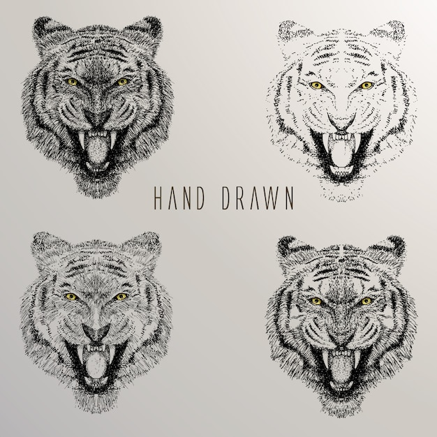 Tiger's head hand drawn collection Free Vector