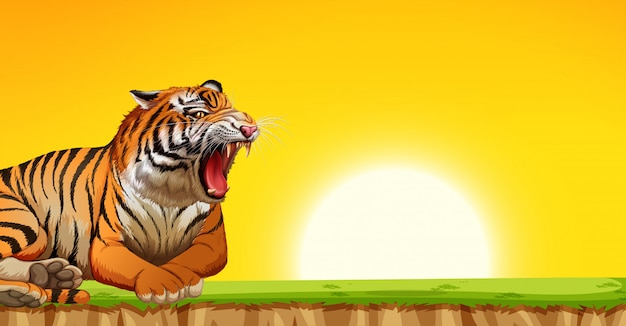A tiger on sunset scene Free Vector