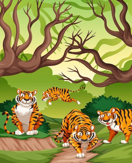 Tigers in jungle scene Free Vector