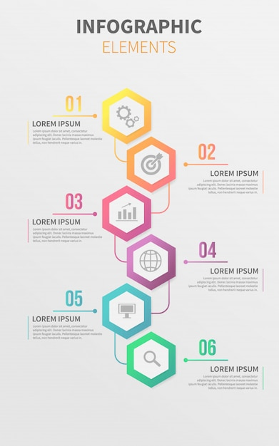 timeline vertical infographic template vector premium download