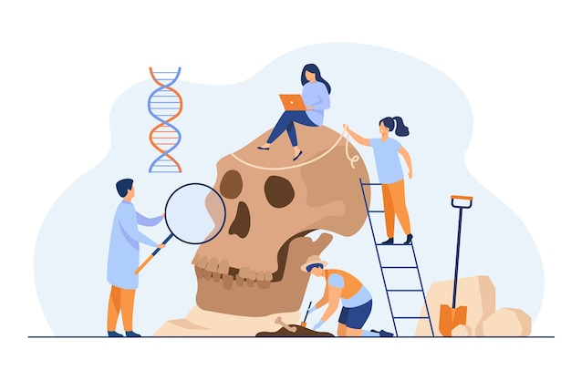 Tiny anthropologists studying neanderthal skull flat illustration. Free Vector