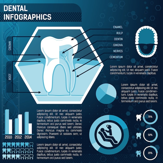 Tooth anatomy, health and prevention template for design infographic Free Vector