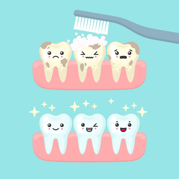 Концепция стоматологии чистки и чистки зубов. милый мультфильм зубы изолированных иллюстрация Premium векторы