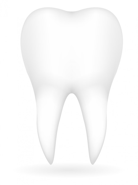Tooth vector illustration Premium Vector