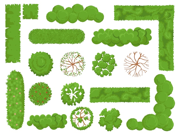 Top view trees and bushes, forest tree, green park bush and plant map elements look from above isolated  set Premium Vector
