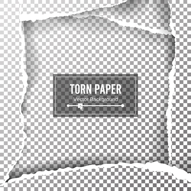 Torn paper blank background Premium Vector