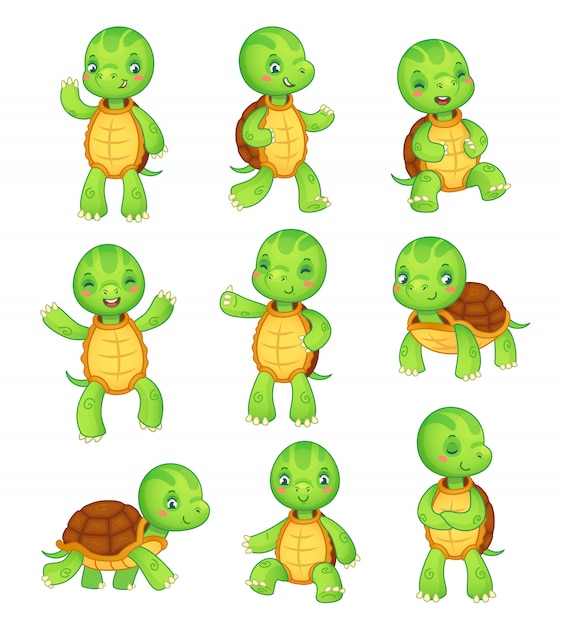 Tortoise colorful isolated characters vector animal illustration collection Premium Vector
