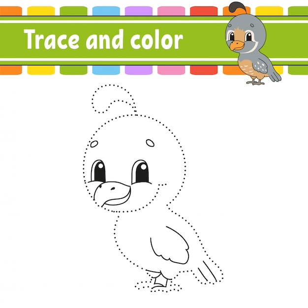 Trace and color. quail bird. coloring page for kids. handwriting practice. Premium Vector