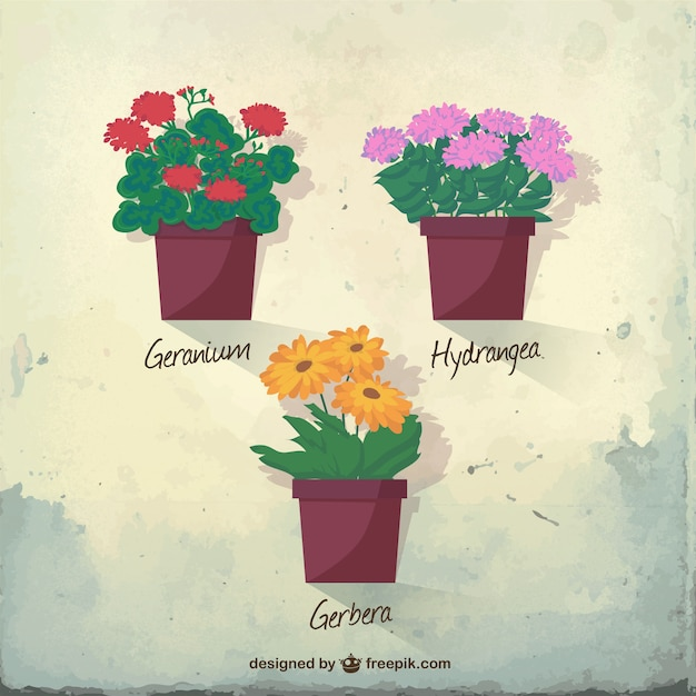 Traditional flowerpots Free Vector